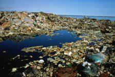 Rác thải nhựa: Nguy cơ hủy hoại môi trường biển của nước ta