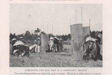 Dọc theo con đường cái quan của Đông Dương năm 1931 (kỳ 1)